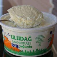 GY- menemen koyun yogurt