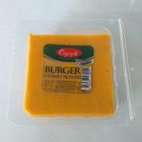 GY- cheddar peyniri